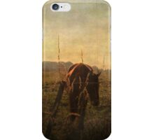 A new day dawning ... iPhone Case/Skin
