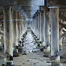 Under Canning Bridge by pennyswork