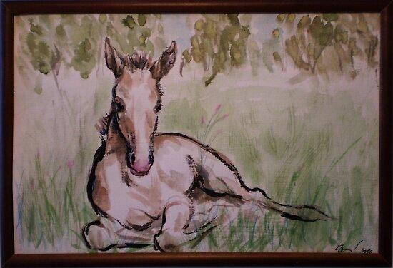 Foal in grass by stepanka