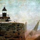 Sydney phare de l'Opera 2 by Sonia de Macedo-Stewart