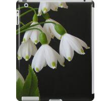 Summer Snow Flakes iPad Case/Skin