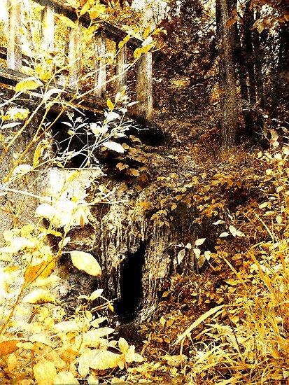 The Troll's Doorway by Veronica Schultz