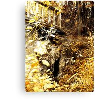 The Troll's Doorway Canvas Print
