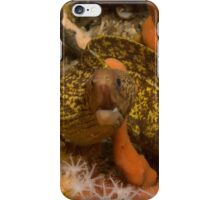 Sieve-Patterned Moray iPhone Case/Skin