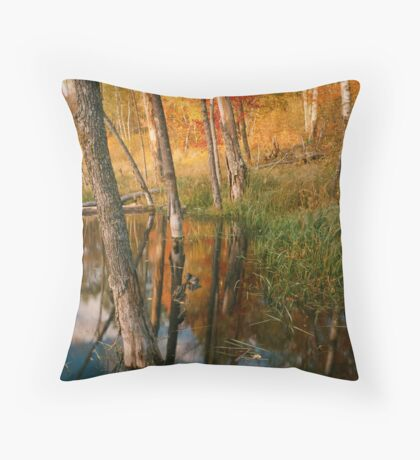 Flooded Beaver bay Throw Pillow
