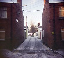 snow in the liberties by annette andtwodogs