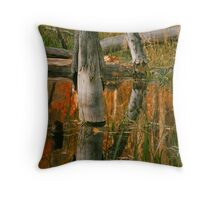 Fall high water in Beaver pond Throw Pillow