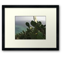 Raw beauty III Framed Print