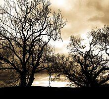 In the Bleak Mid Winter by Lyndy