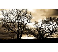 In the Bleak Mid Winter Photographic Print