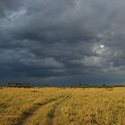 Storm brewing over the Mara by kczpics