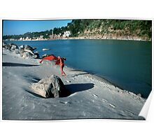Ganga River Rishikesh India Poster