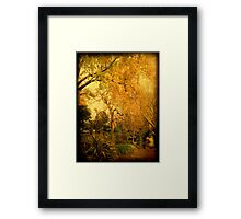 Gentle reminders ... Framed Print