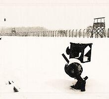 Auschwitz Birkenau by Linda  Morrison