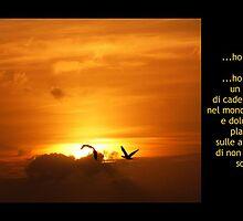 ...dei sogni è fatta l'essenza del mondo... by shrdn