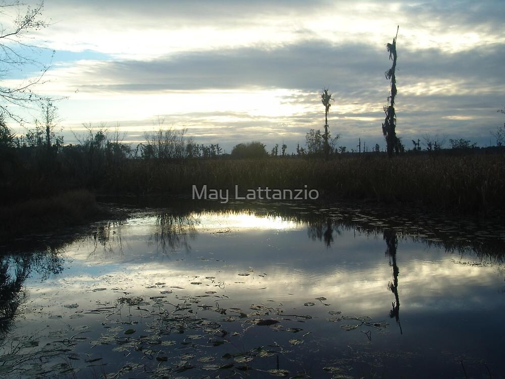 Cold Afternoon by May Lattanzio