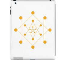 Protection Gold iPad Case/Skin