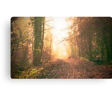 Sunlight and mist Canvas Print