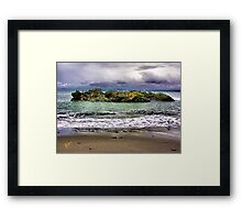 Bird Island Framed Print
