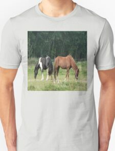 Black and white and brown horse T-Shirt