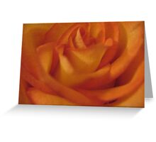 Juicy Fruit Rose Greeting Card