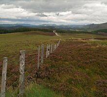 Glen More by WatscapePhoto