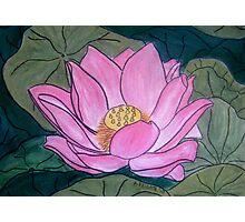 Pink Lotus Photographic Print