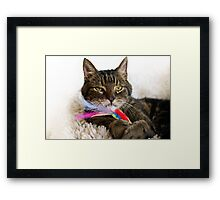 Brammetje: I loved him so much Framed Print