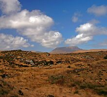 A Donegal Landscape by Martina Fagan