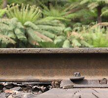 Puffing Billy Railway Track by Emma Holmes