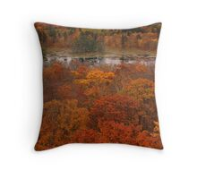 Lookout tower in the fall Throw Pillow