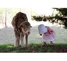Little Bo Peep Photographic Print