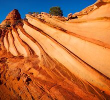 Rock Striations by Inge Johnsson