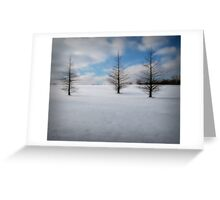 Starkness of Winter Greeting Card
