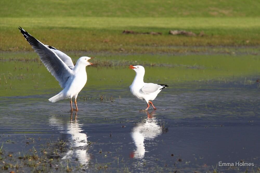 Golfing Gulls by Emma Holmes