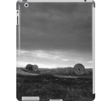 russian rural landscape  iPad Case/Skin