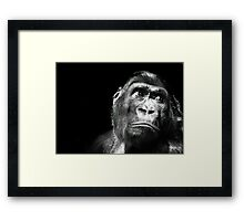A somewhat hopeless situation Framed Print