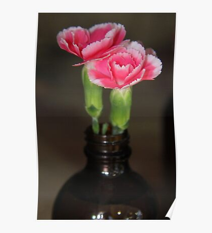 Carnation Bottle Poster