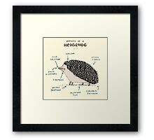 Anatomy of a Hedgehog Framed Print