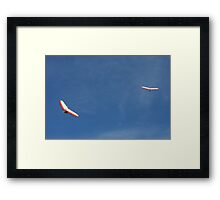 Hanging Above Lennox Head (NSW) Framed Print
