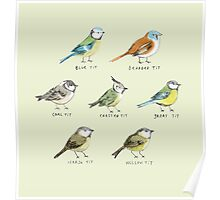 The Tit Family Poster
