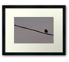 Bird On A Wire... Framed Print