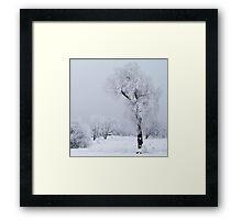 Frozen willow Framed Print