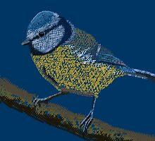 Birds - Blue tit by jankoba