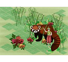 Red Panda Friend Photographic Print
