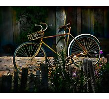 The Queen of Bicycles Photographic Print