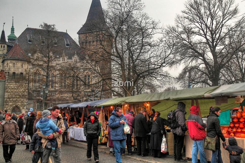 Festival under castle by zumi