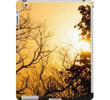 Afternoon Silhouette  iPad Case/Skin