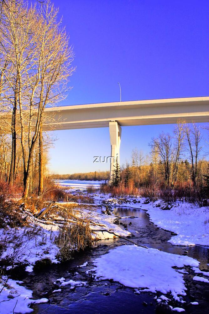 Stoney Trail Bridge by zumi