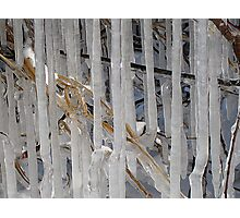 Icey Times Photographic Print